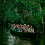 amazon rainforest - small boat amazon river cruises