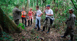 Groups Tours in the Amazon