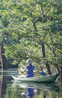 luxury amazon river cruises brazil
