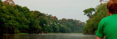 Ariau-Amazon-Towers-Lodge-brazil-2
