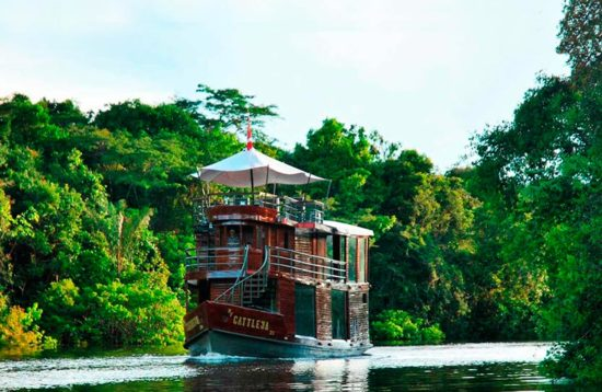 amazon riverboat cruise