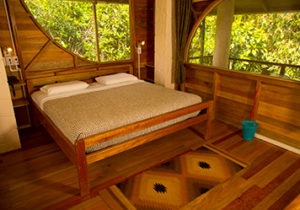 luxury amazon river cruise brazil