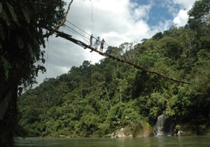 Ecuador Amazon Tour