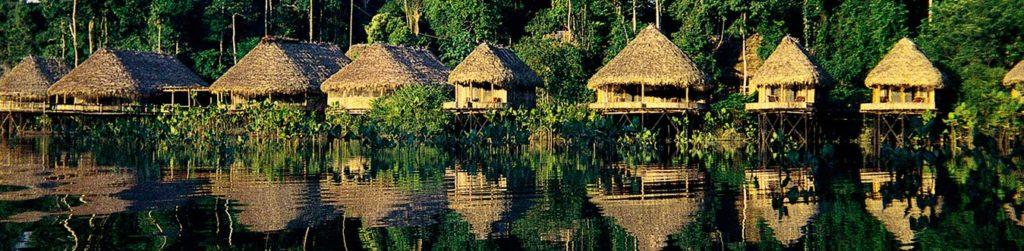Amazon trip