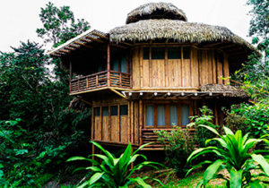 la-selva-lodge-amazon-ecuador3