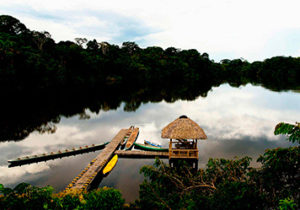 amazon ecuador tour