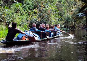 napo-wildlife-center-amazon-ecuador6