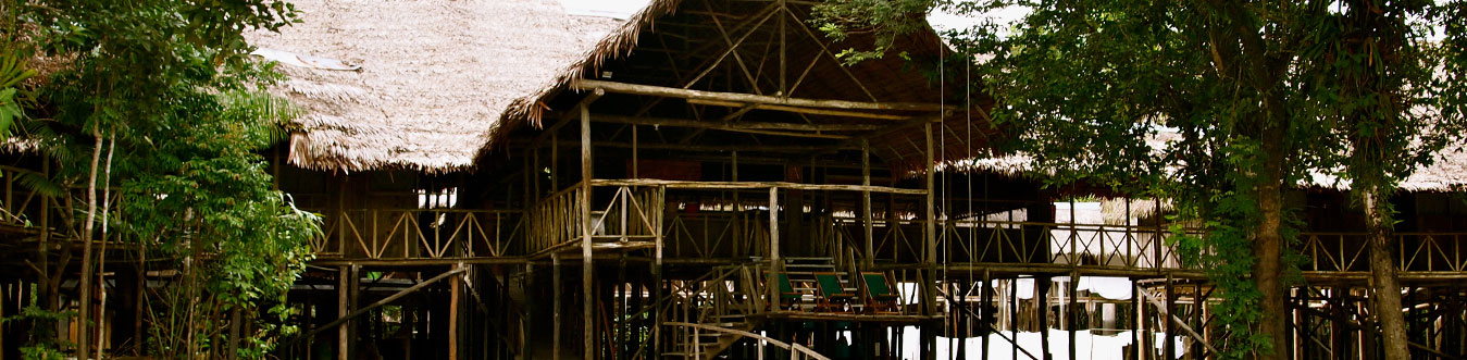Amazon lodge