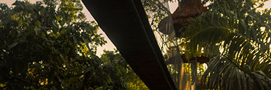 tree-house-lodge-amazon-peru2