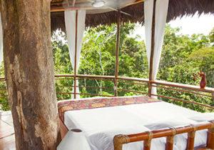 tree-house-lodge-amazon-peru3