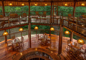 tree-house-lodge-amazon-peru4