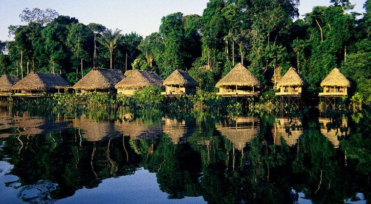 Amazon cruises vs lodge based tours