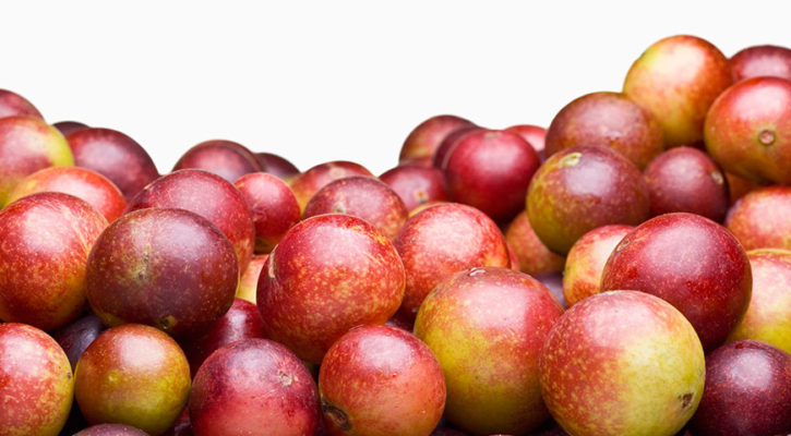 Camu Camu the new Amazon 'it' fruit?