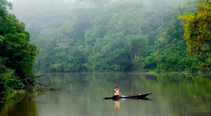 Top ten Amazon Peru facts