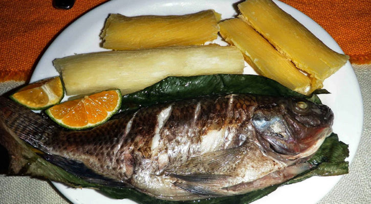 Typical foods of the Amazon people