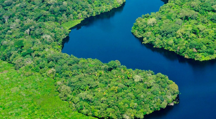 Why cruise the Bolivian Amazon?