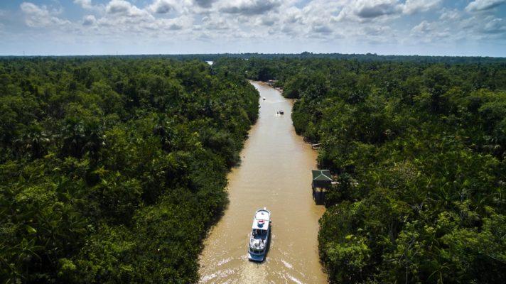 Amazon River Cruises: Brazil vs Peru