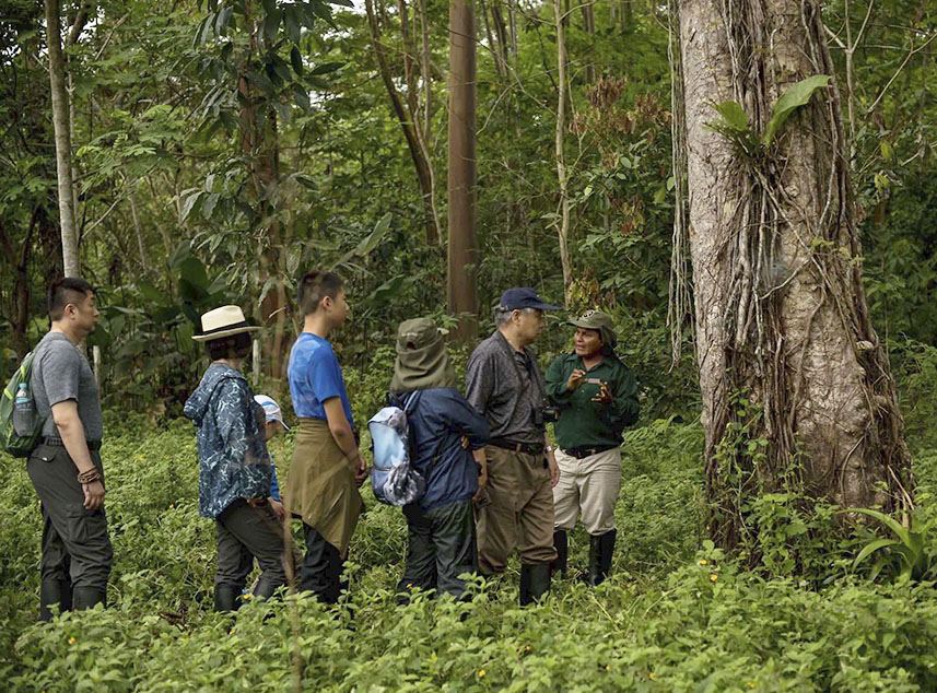 RF Expeditions Crucero por el Amazonas | Senderismo en el Amazonas