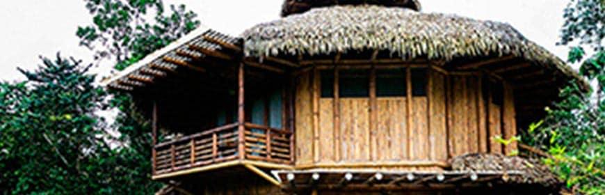 la-selva-lodge-amazon-ecuador3_optimized