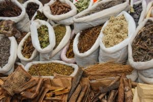 Important medicinal plants in the Amazon