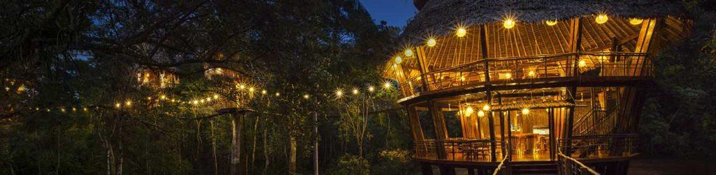 Tree house lodge 1