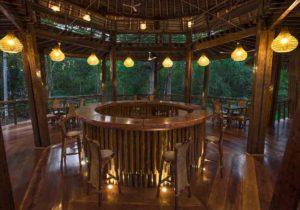 Tree house lodge 4