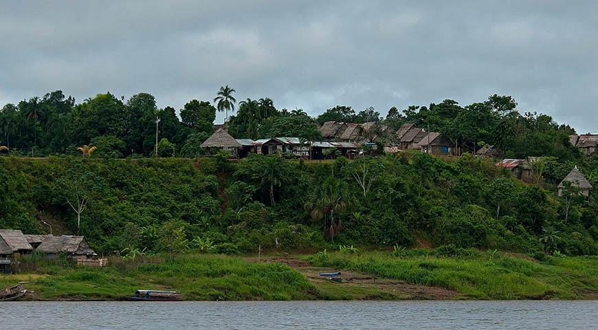 Peru Rainfores